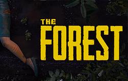 La forêt.