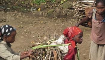 Por ser niña africa alegria gambo alegria sin fronteras