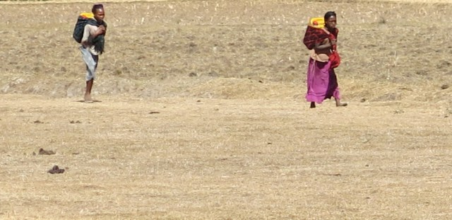 Etiopía: Buscando agua en medio de la sequía africa alegria gambo alegria sin fronteras etiopia