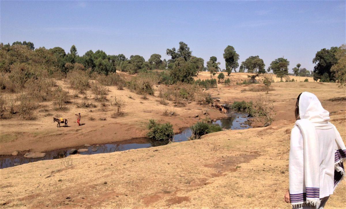 La gloria de los depredadores africa alegria gambo alegria sin fronteras etiopia gambo