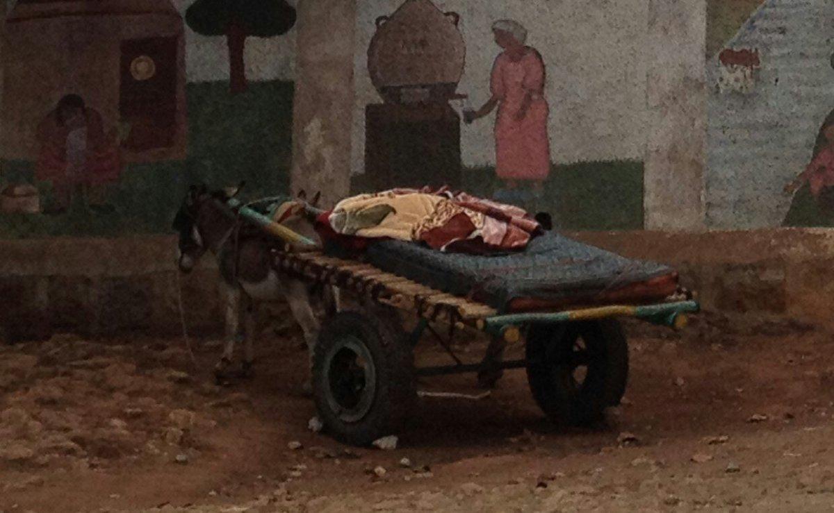 Viaje a la vida africa alegria gambo alegria sin fronteras dr alegria