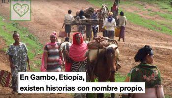 Uneix-te al Teaming Gambo africa