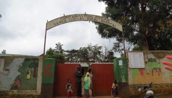 L'educació / La educación africa