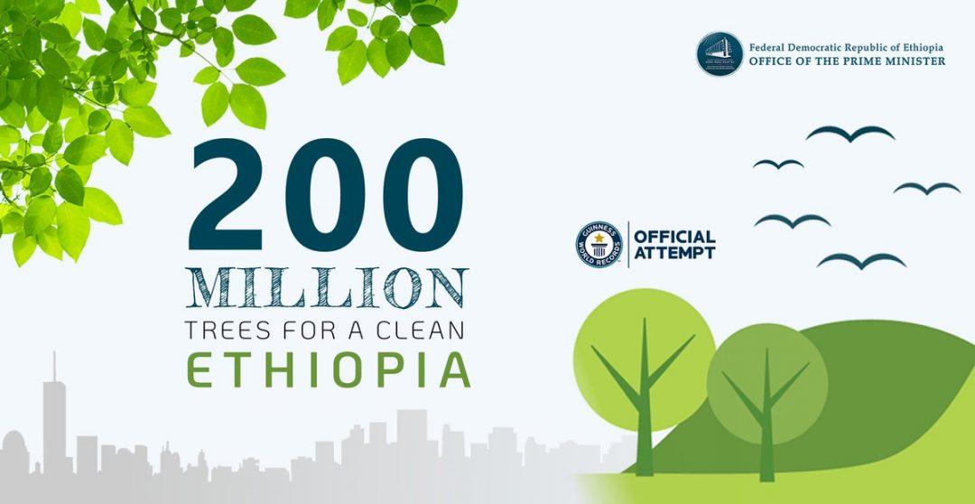 Etiopía bate récord ejemplar de plantación de árboles contra la sequía y el cambio climático
