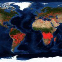 Angola y Congo se incendian más que el Amazonas