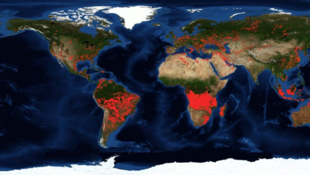 More fires burning in Angola and Congo than in the Amazon