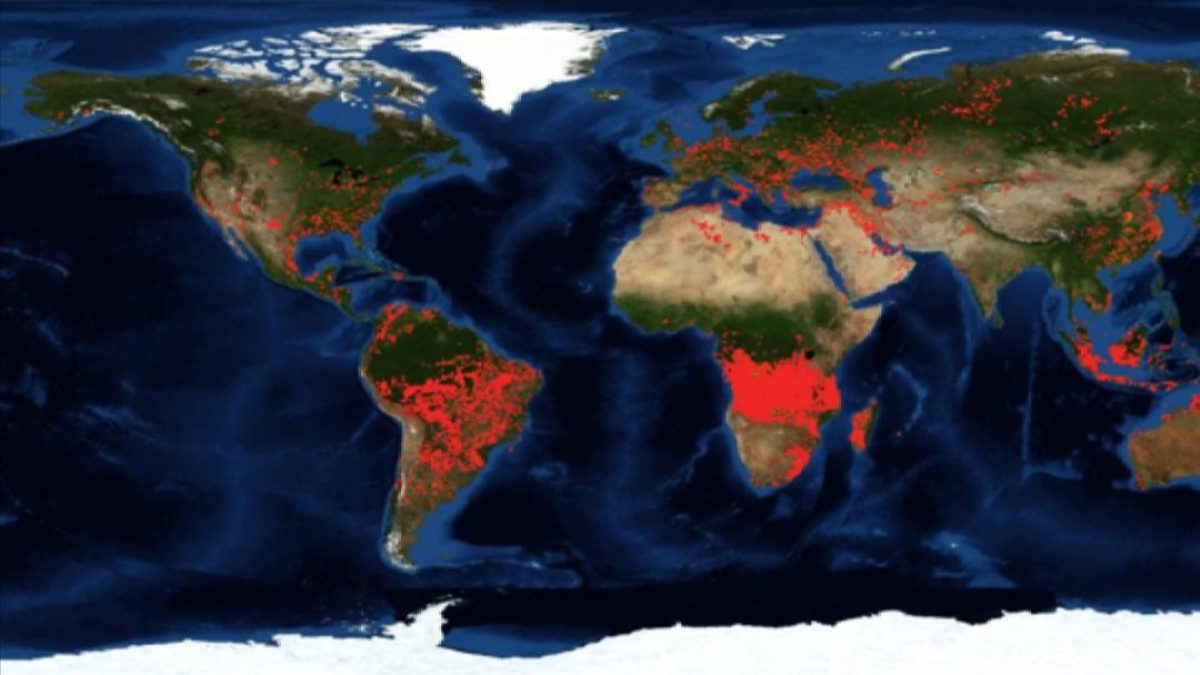 More fires burning in Angola and Congo than in the Amazon africa alegria gambo alegria sin fronteras