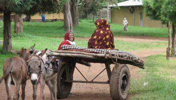 Etiopía en estado de emergencia ante la pandemia del Coronavirus africa etiopia gambo