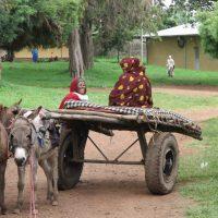 El Hospital de Gambo en Etiopía, combatiendo la pandemia entre epidemias