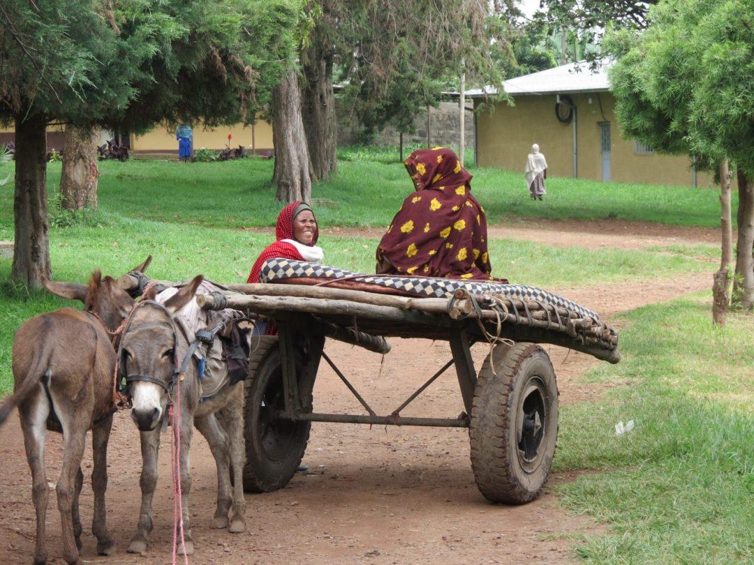 Nacer en Etiopía en tiempos de Coronavirus africa