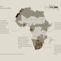 """En África, la falta de datos aumenta el temor a una """"epidemia silenciosa"""""""