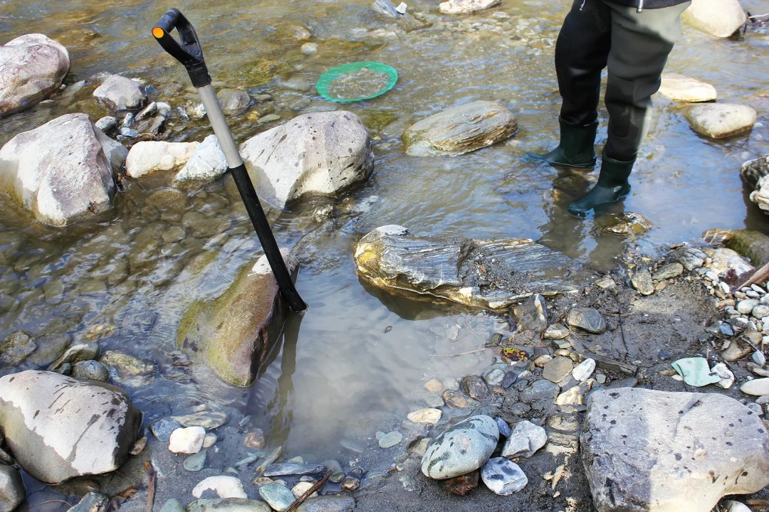 Gold prospecting is a great hobby and a perfect way to social distance