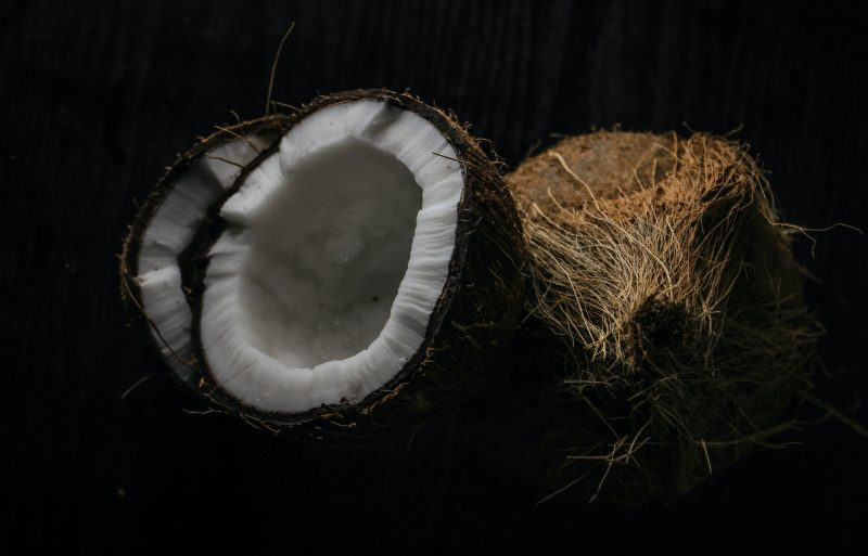 can cats eat coconut