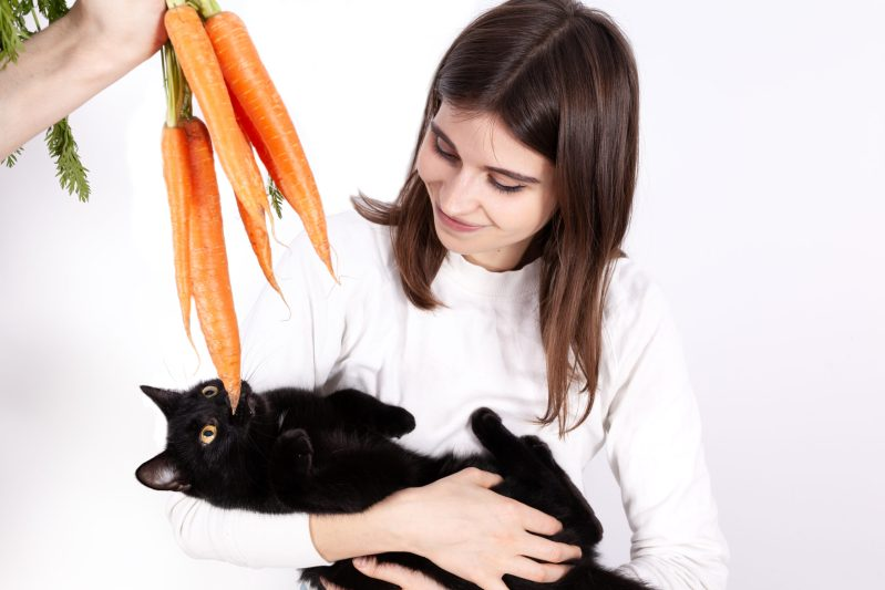 woman tries to give carrots to her cat to eat