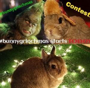 #bunnygrinchmas2