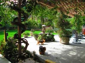 Lovely back yard