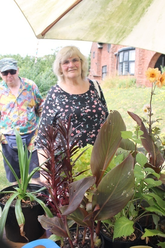 a woman looks a range of different coloured plants
