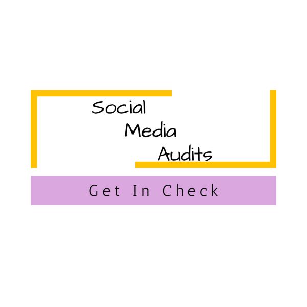 copacetic aesthetix social media audits