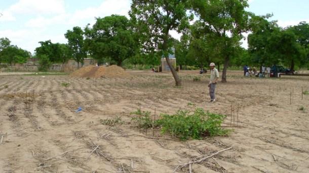 2011_Burkinasara_005