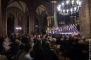 2016-06-04 Cathedrale Strasbourg_102
