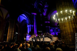 2016-06-04 Cathedrale Strasbourg_171