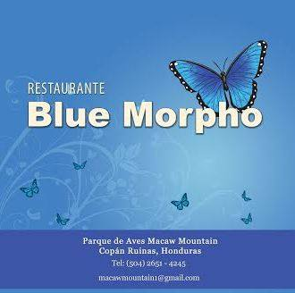 Restaurante Blue Morpho