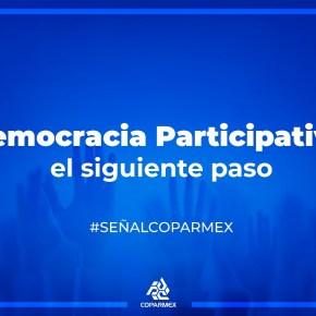 DEMOCRACIA PARTICIPATIVA:  El SIGUIENTE PASO