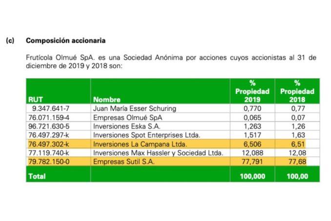 Accionistas de la sociedad Frutícola Olmué SpA