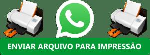 Enviar Arquivo por WhatasApp