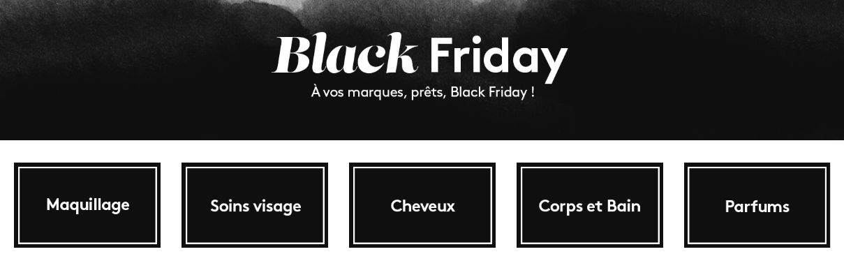 Black Friday Birchbox