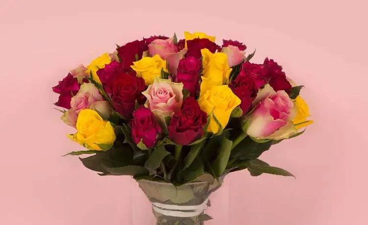 bon plan fleurs loisirs encheresv