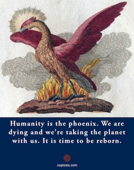 phoenix.001