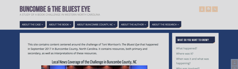 Screenshot of the homepage of the Bumcombe and The Bluest Eye website