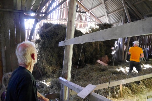 Moving the hay to the hayloft