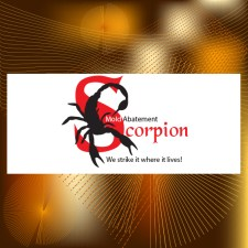 Scorpion Mold Abatement