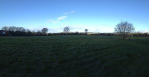 The field behind our new house on a 7.30am walk