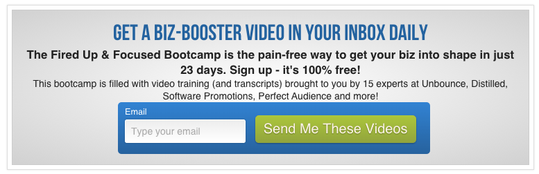 bottom of page opt-in box