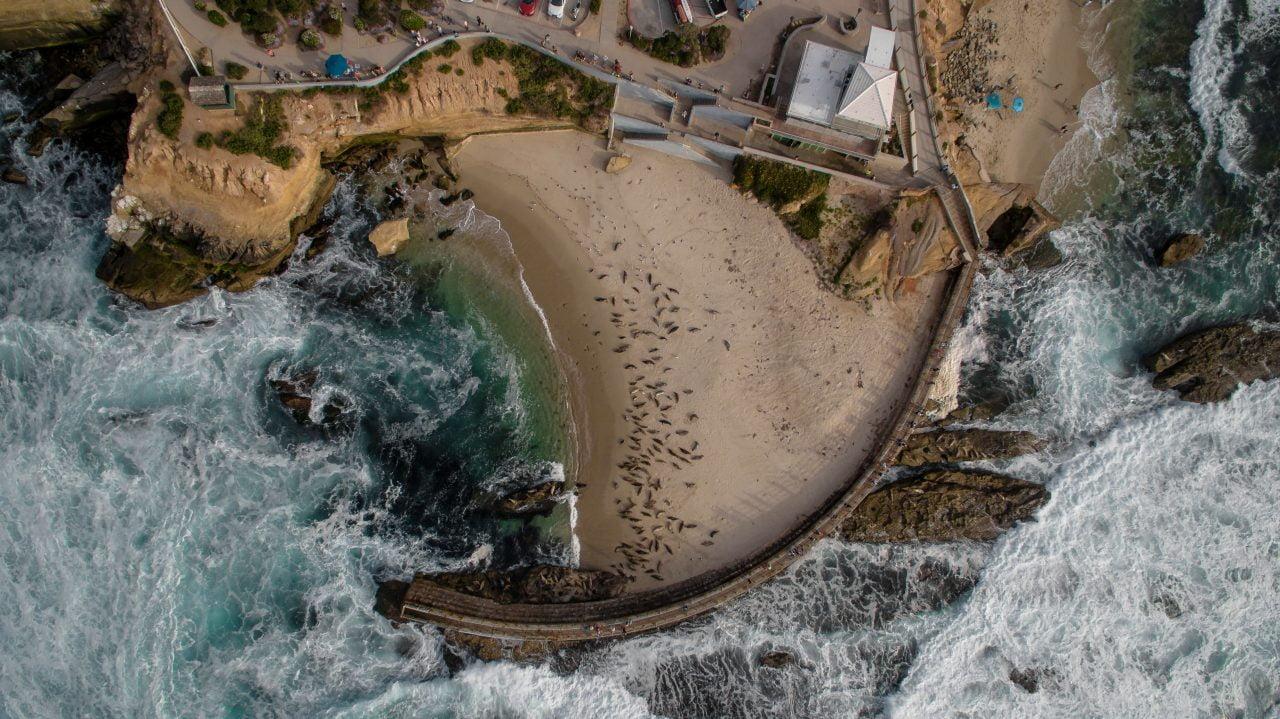 Header image for website of San Diego copywriter — Photo by Matt Howard on Unsplash