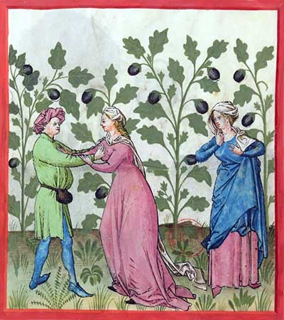 Image result for medieval pictures of eggplant