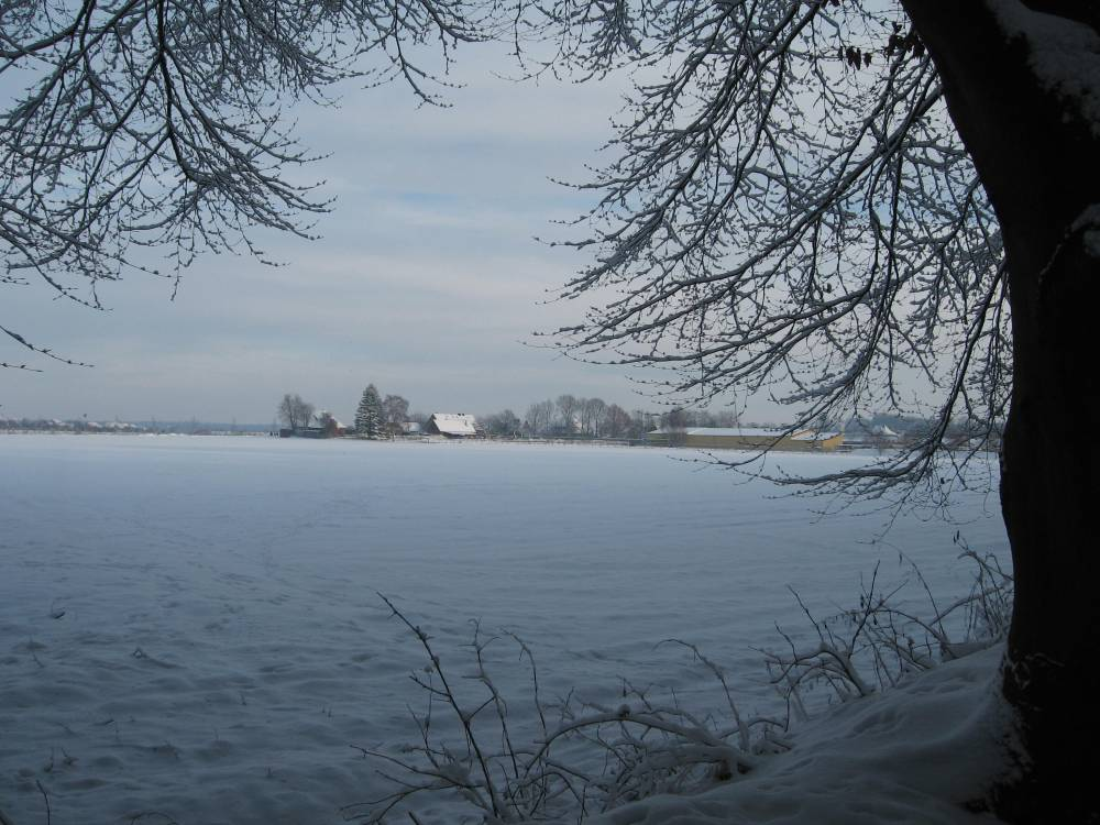 Winter Wonderland (3/6)