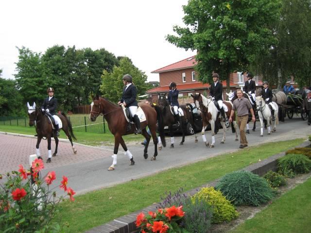 Harvest parade horses