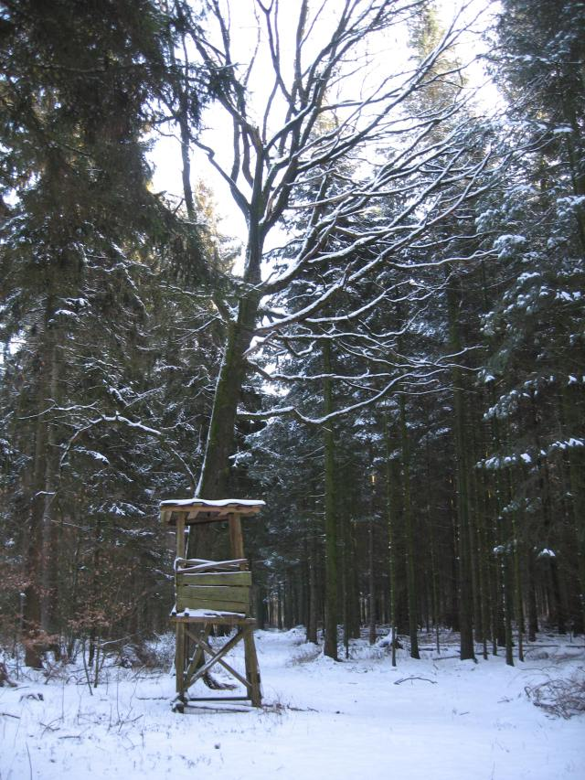 Snowy hunting stand