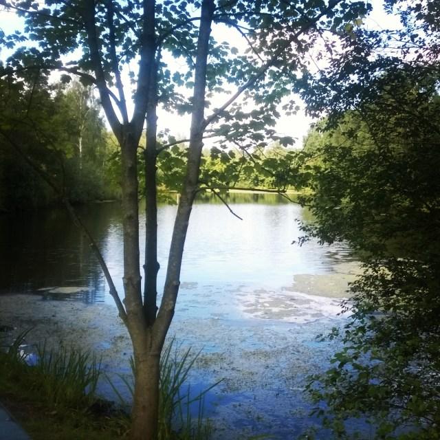 Lake, Moordeich