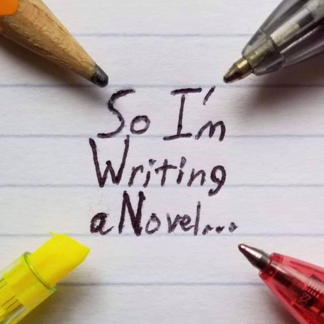 So I'm Writing a Novel logo