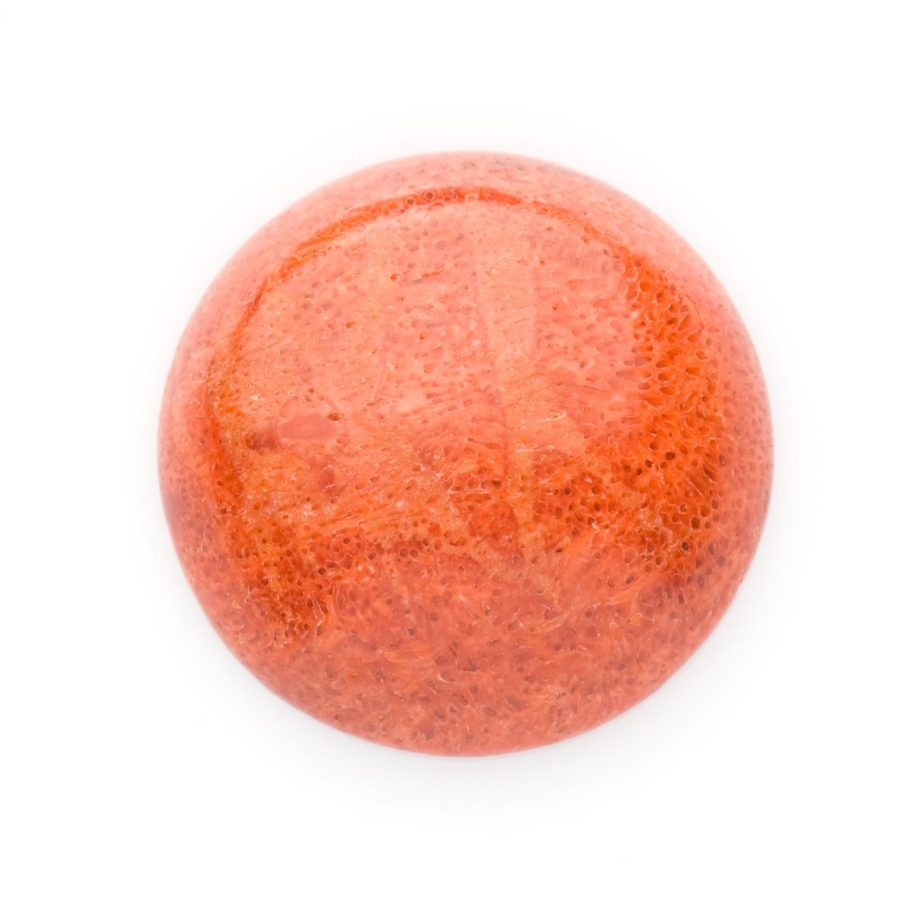 Red Sponge Coral Stone