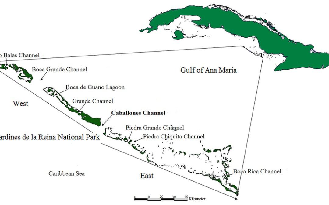 Marine Parks – Jardines de la Reina