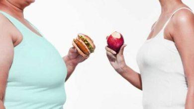 Photo of Шесть причин лишнего веса