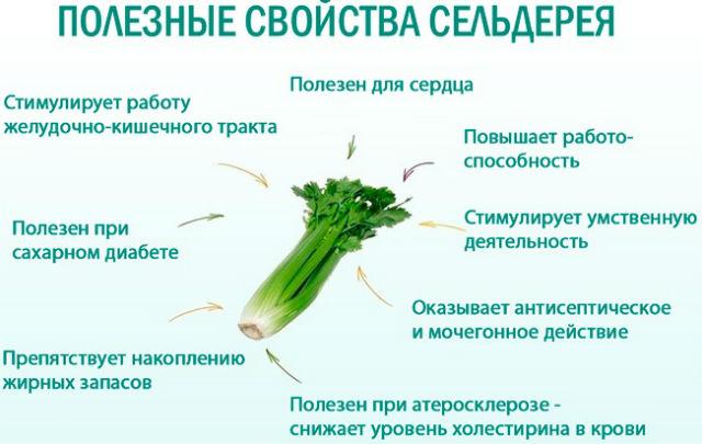 Полезные свойства овоща для женского здоровья