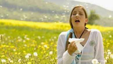 Photo of Как бороться с сезонной аллергией без лекарств?