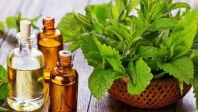 Photo of Эфирные масла при простуде и гриппе – лучшие рецепты